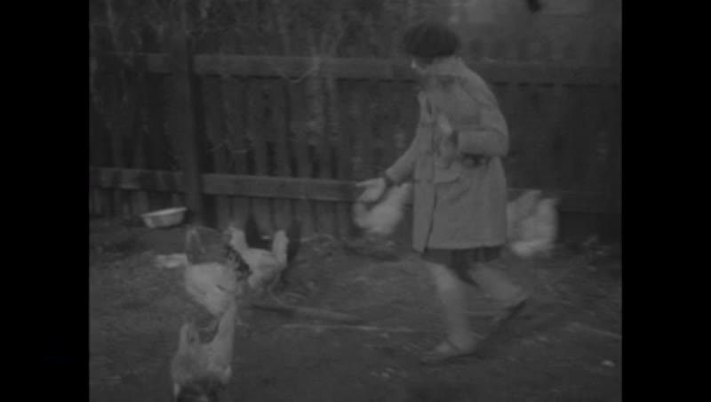 Various scenes from home movie reel - graduate posing for camera, girls on a farm picking up chickens c.1930