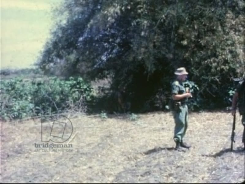 Royal Australian Regiment on search and destroy mission, ambush and capture viet cong, 1967
