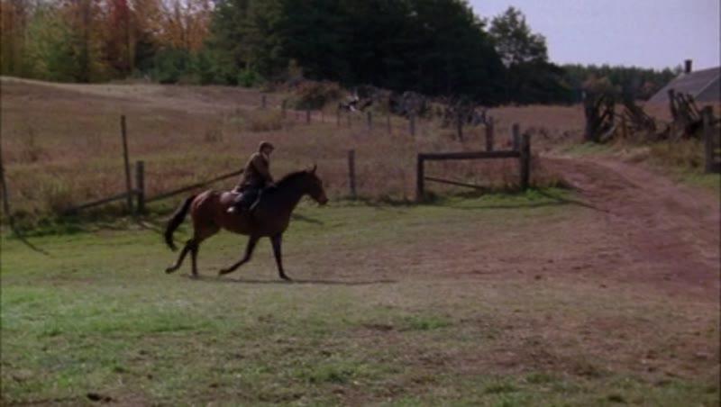 Man on horseback riding through the countryside, 1908 - reenactment. Clip 5