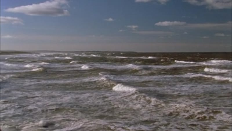 Shot of the seaside and waves