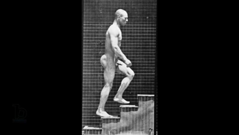 Animation of 'Man ascending stairs', from 'Animal Locomotion', 1887 Eadweard Muybridge