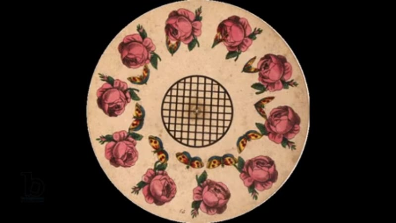 Animated 19th century phenakistoscope with butterflies and roses