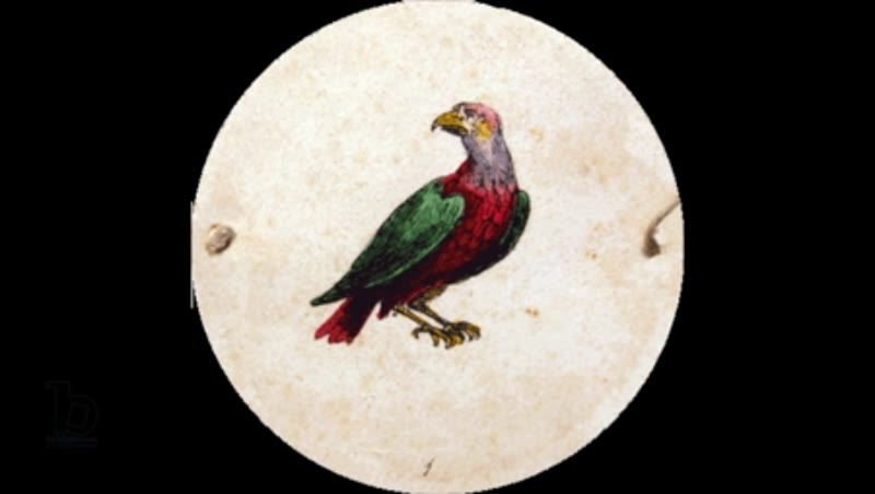 Animated thaumatrope with caged bird, from the 19th century