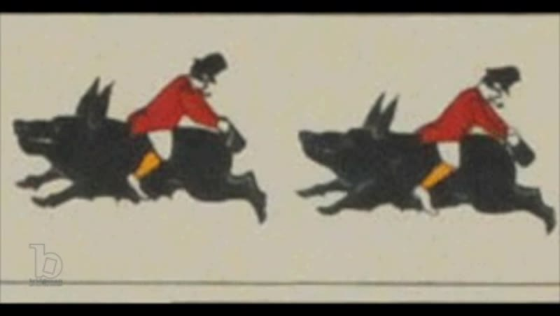 Animated 19th century zoetrope with man riding backwards on a hog