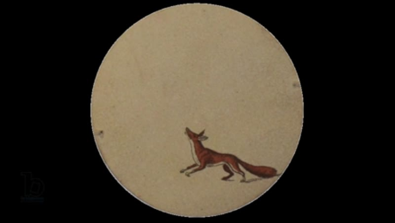 Animated 19th century thaumatrope with fox and bird