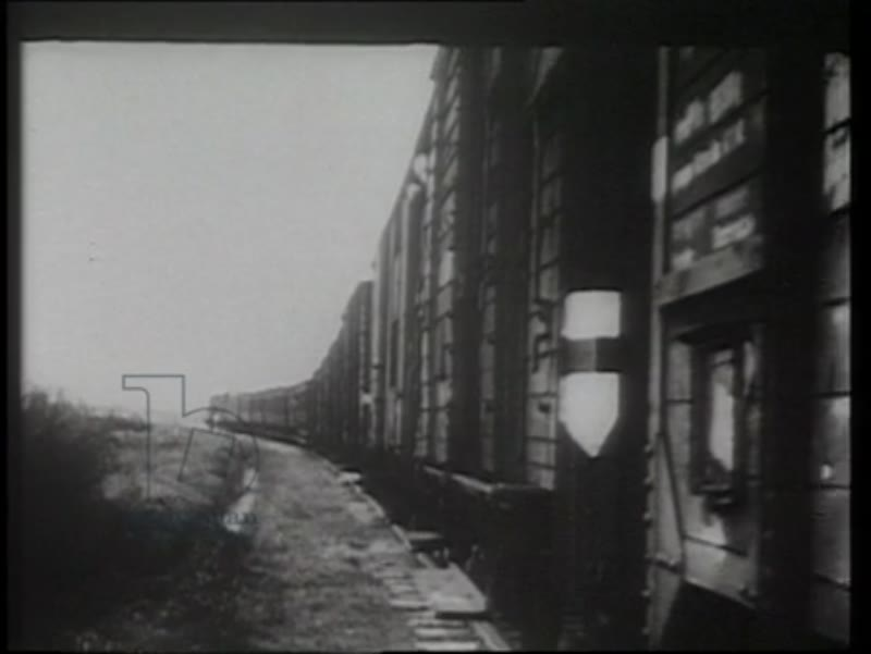 Trains carrying deported Jews to Poland, 1944