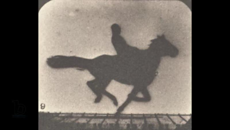 Animation of galloping horse photographic slate c 1878 Muybridge