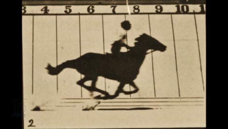 Animation of 'The Horse in Motion', 'Animal Locomotion' series, c.1878 Eadweard Muybridge