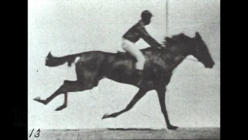 Animation of Eadweard Muybridge's Jockey riding a race horse from his 'Animal Locomotion' series, 1878 / 1887