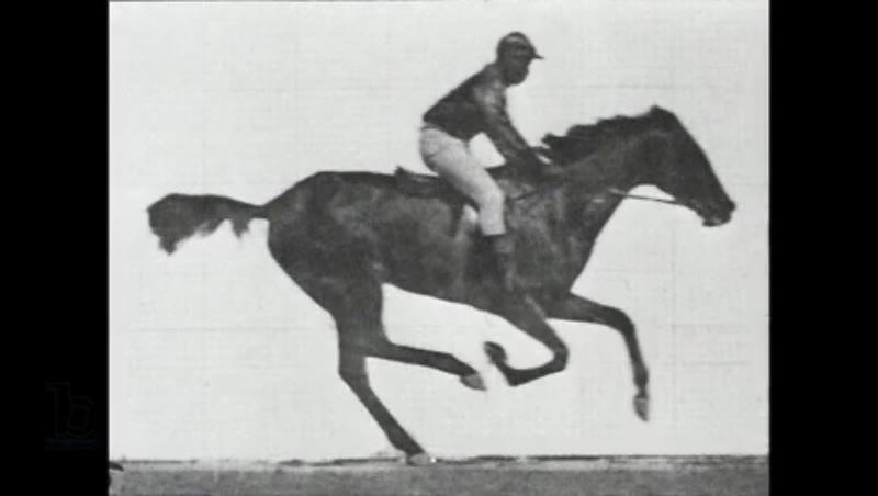 Animation of Eadweard Muybridge's Jockey riding a race horse from his 'Animal Locomotion' series, 1878/87