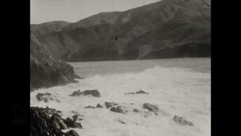 New Zealand Whaling - the Perano family whaling operation 1930 part 2