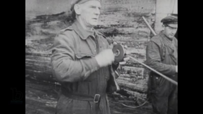 1940s documentary on whaling operations in Antarctica part 4