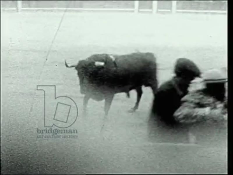 Bull fight at Las Ventas, Madrid
