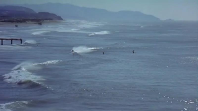 People in California surfing in ocean