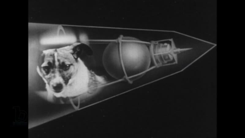 United States, 1950s: Animation of satellite, dog superimposed in satellite
