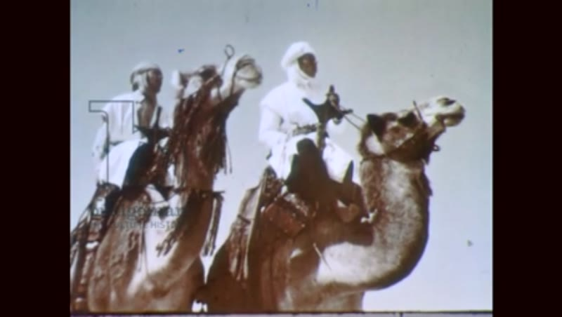 Men ride camels in the desert, 1950s