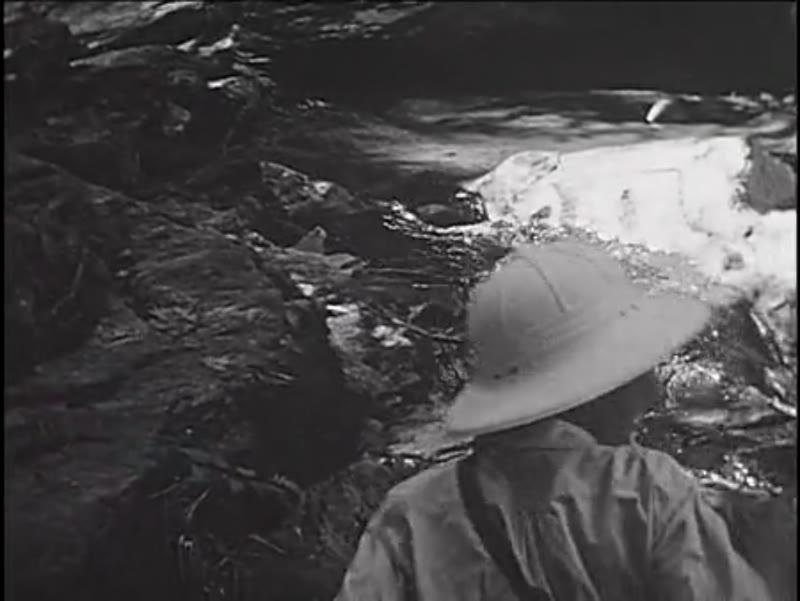 Tarzan and the Rocky Gorge, 1936