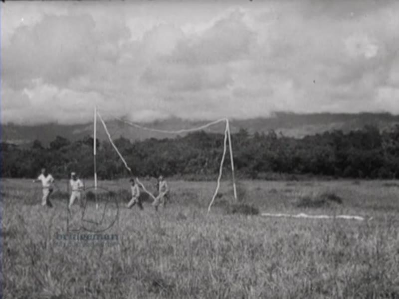 American survivors of a plane crash in Indonesia.