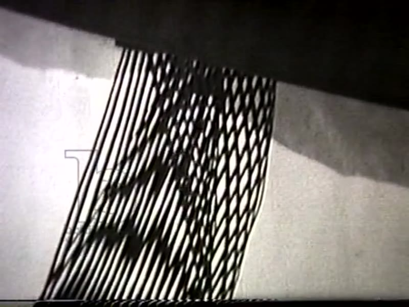 Movement and Vibration in Space: Sculpture by Gego,1959