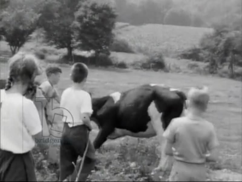 Hudson Guild Farm, 1943 (16mm film)