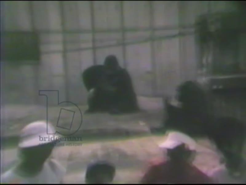 Visiting Friends in Japan, 1985 (8mm film)