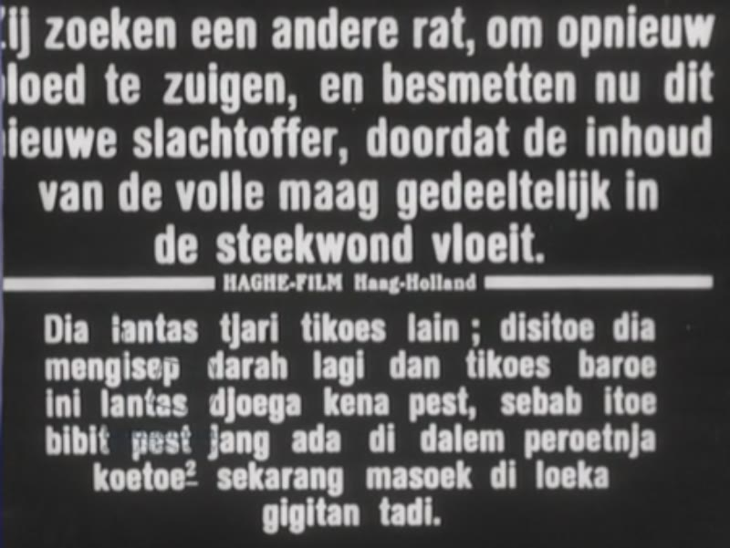 A Dutch animation of how the rat plague is caused, and footage of a woman with the plague in Indonesia, 1926.