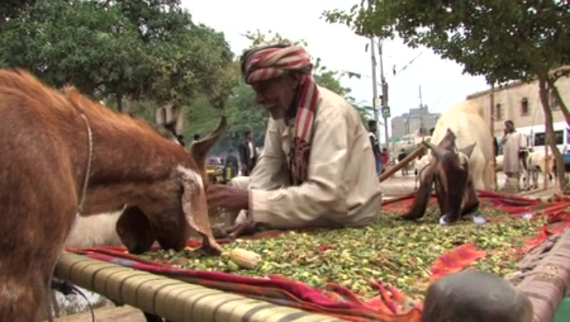 Eid Preparations in Karachi 1
