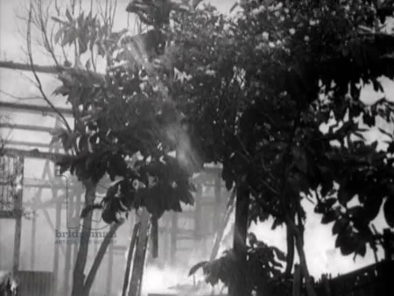 Houses on fire in Ambarawa, Indonesia, 1945