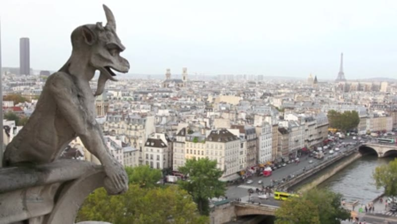 View over Paris from Notre Dame Cathedral 3