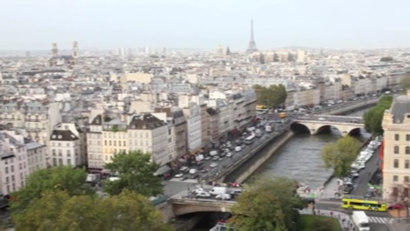 View over Paris from Notre Dame Cathedral 5