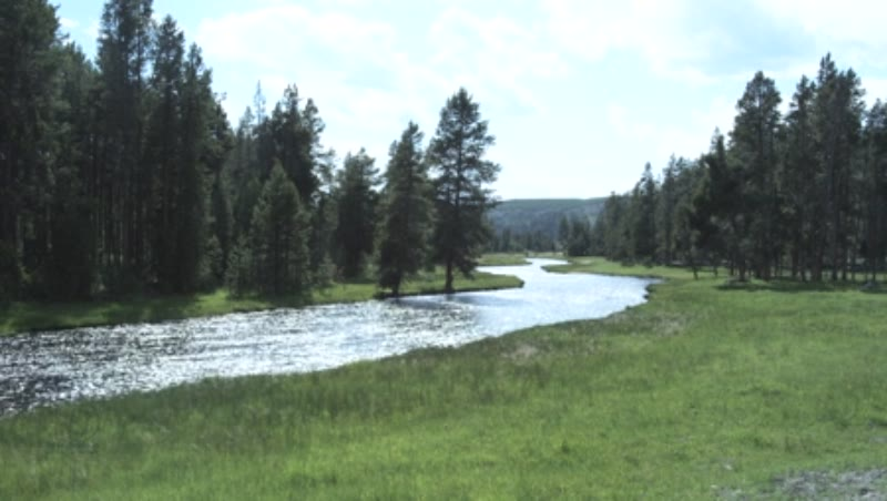 Nez Perce Creek, Yellowstone National Park, Wyoming.
