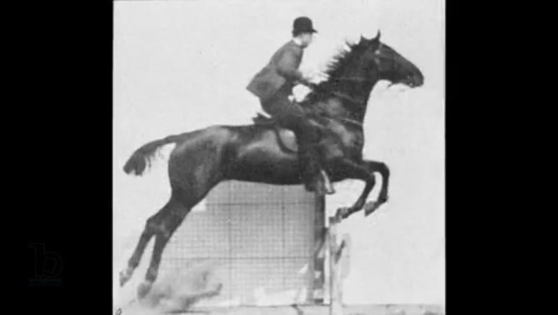 Animation of 'Man and horse jumping a fence', plate 640 from 'Animal Locomotion', 1887, by Eadweard Muybridge