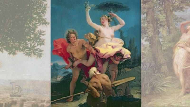 Various Artists, Apollo and Daphne throughout time